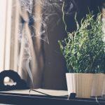 焦燥感・不安感は生活習慣の改善で消える